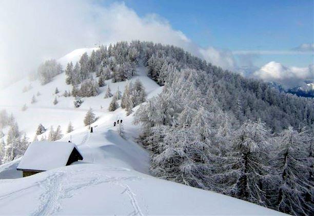 randonnée turini raquettes à neige avec rando06 rando83