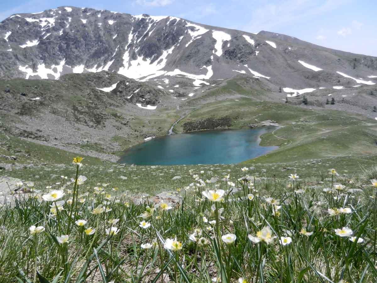 Randonnée lacs millefonds mercantour avec rando06