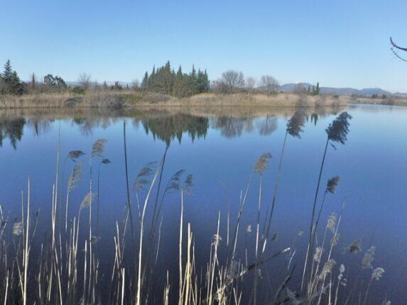 randonnée étang de Villepey